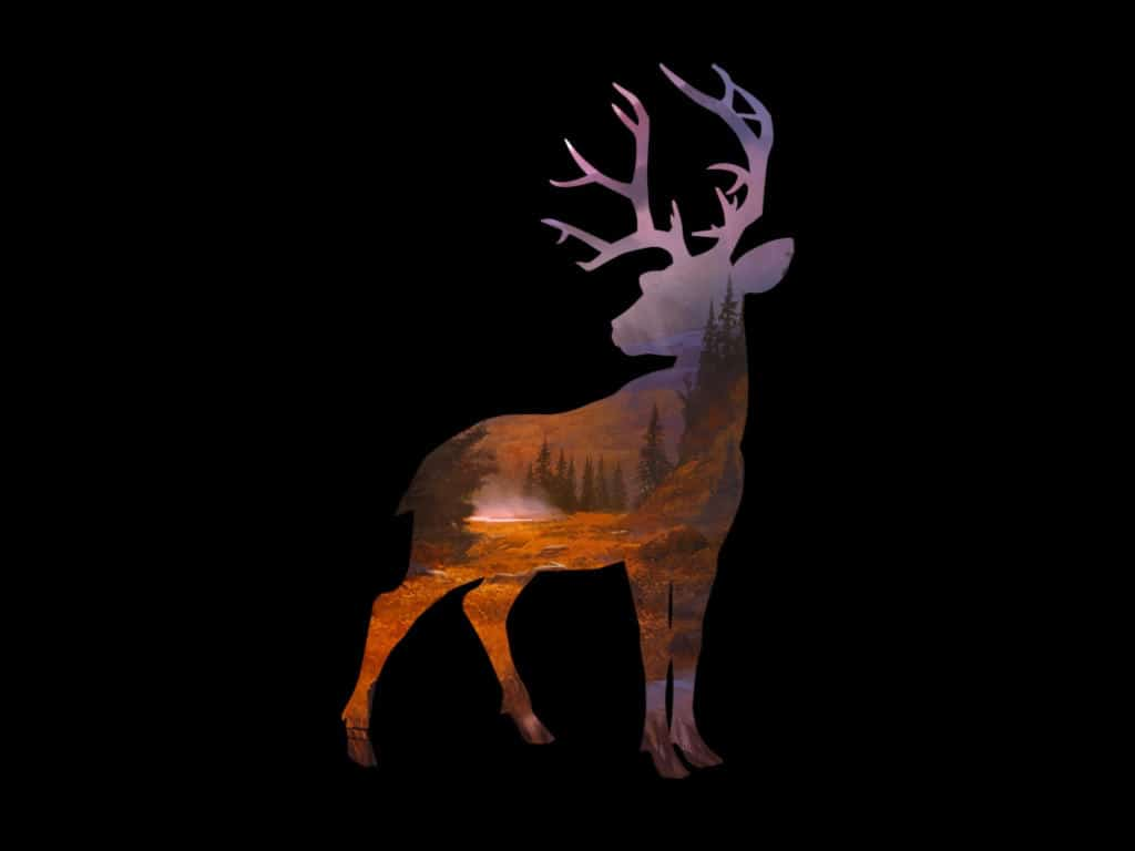 Deer Hunter 2016 trucchi Android e iOS