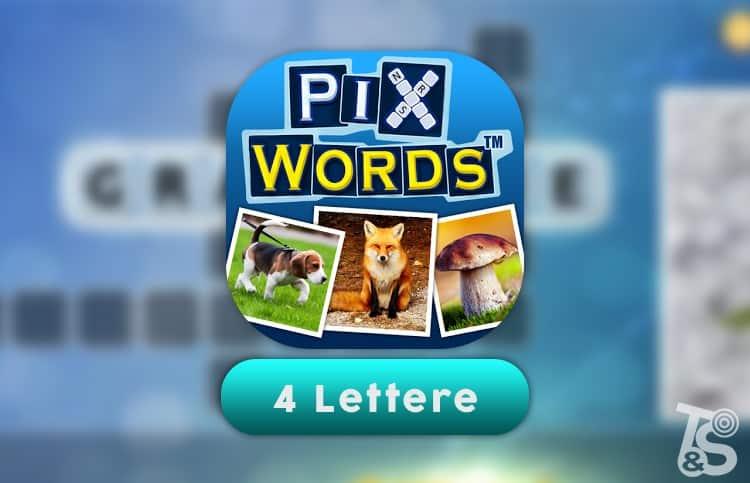 Soluzione PixWords 4 lettere