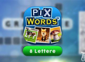 Soluzione PixWords 8 lettere