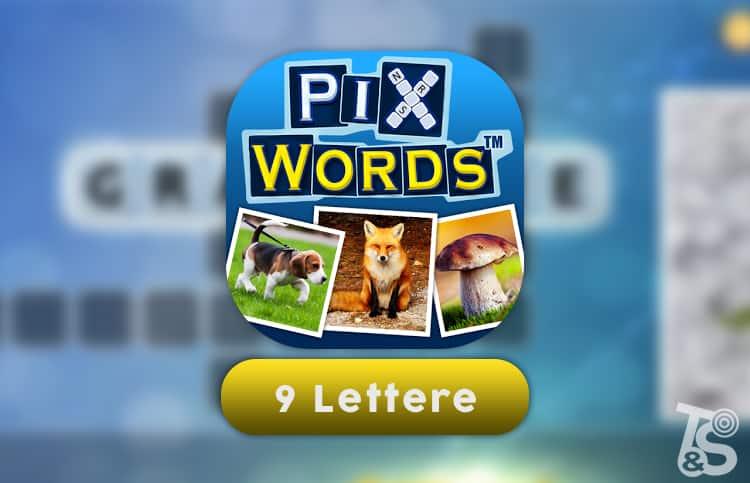 Soluzione PixWords 9 lettere