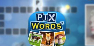 Soluzione PixWords tutti i livelli