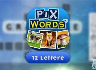 Soluzioni PixWords 12 Lettere