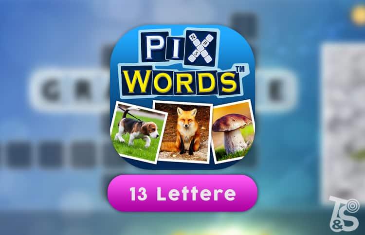 Soluzioni PixWords 13 Lettere
