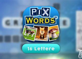 Soluzioni PixWords 16 Lettere